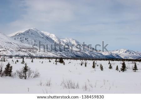 The Trans-Alaska Pipeline System in Interior, Alaska
