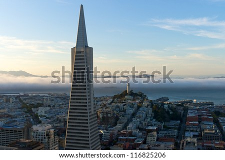 The Transamerica Pyramid in San Francisco early evening