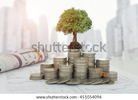 The tree are grow up on coins stack and the growth investment analysis report, business newspaper on desk of investor with city background. Concept of finance and investing.