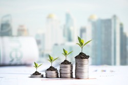 The tree  growing on money coin stack for investment,  business newspaper with financial report on desk of investor real estate business. Investment property growth Concept