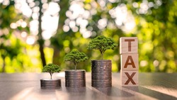 The tree grows on piles of money and lumps of wood with tax signs, financial ideas and economic conditions.