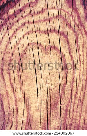 The tree structure in the shape of heart