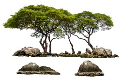 The trees. Mountain on the island and rocks.Isolated on White background.Used in the design of advertising media, architecture