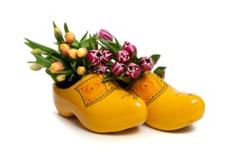 The tulip is the most succesful export product of The Netherlands