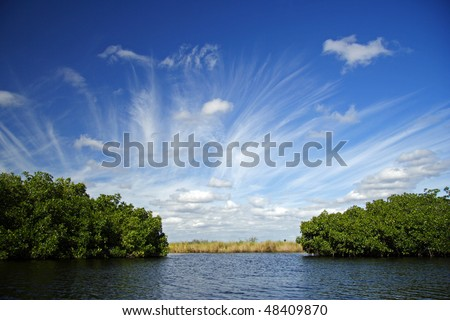 The Turner River in Big Cypress National Preserve, Florida Everglades