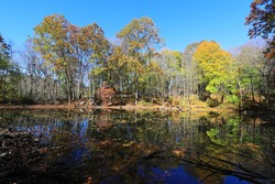 The turtle pond reflects with fall colors along the Putnam Trailway in upstate New York.