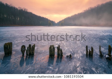 The twin trees and the frozen lake, Tervuren, Belgium