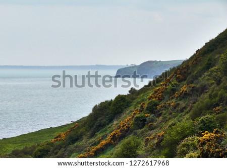 The Ulster coastline at Cushendall.