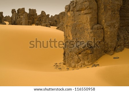 The unusual removed rocks among sand. Libyan Desert. Dense gold dust, dunes and beautiful sandy structures in the light of the low sun.