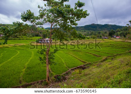 The usual landscape at cloudy weather: rice fields, sky with clouds, hills, trees, houses. Negros island, Philippines #673590145