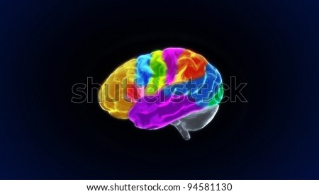 the various sections of crystal brain render for medical and biology concept