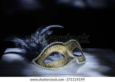 the venetian mask with feather ....