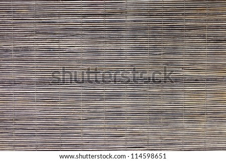 the very old bamboo background for design