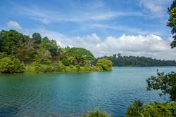 the view of MacRitchie Reservoir Singapore, was completed in 1868 by impounding water from an earth embankment.  There are boardwalks skirting the edge of the scenic MacRitchie Reservoir.