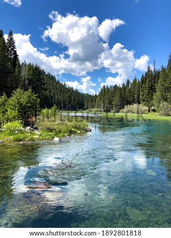 The view of Truckee river on sunny day at North Lake Tahoe, California. Mountain river in Sierras. West coast vacation destinations. California roadtrip.