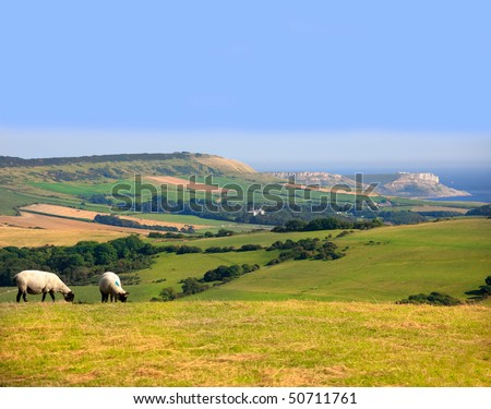 the view over dorset countryside from whiteways hill on army training ground in dorset