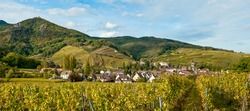 The village of Ribeauville and surrounding vineyards in Alsace, France.