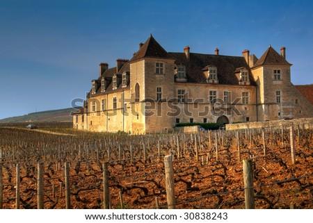 The vineyards of Clos de Vougeot, Burgundy, France