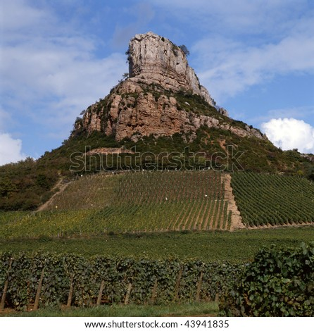 The vineyards of Solutre-Pouilly form part of the appellation d'origine controllee Pouilly-Fuisse.At the background the Roche Solutre. Pouilly-Fuiss? has Chardonnay as the only grape variety.