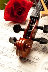 The violin and rose lay on musical notes.