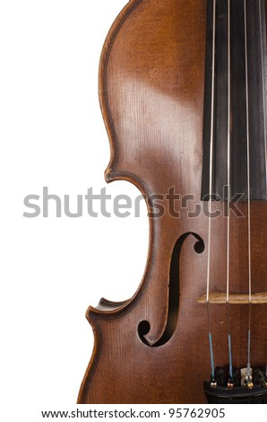 The violin close up on white Background