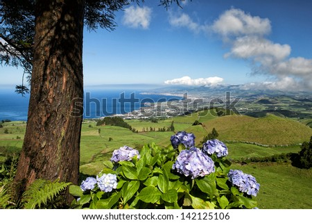 The volcanic hills on Sao Miguel island, Azores, Portugal