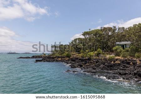 The volcanic shoreline of Rangitoto Island Scenic Reserve at Auckland, New Zealand