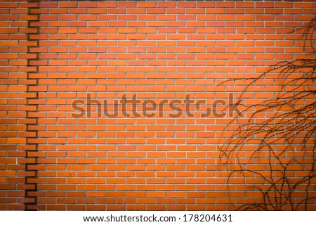 The wall of bricks with naked branches, colored #178204631