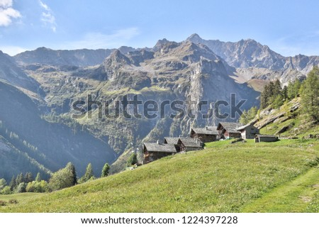 The Walser town of Dorf, with wood and stone lodges, high mountains, forests and pastures, in summer, in Val d'Otro valley, Alps mountains, Italy Foto stock ©