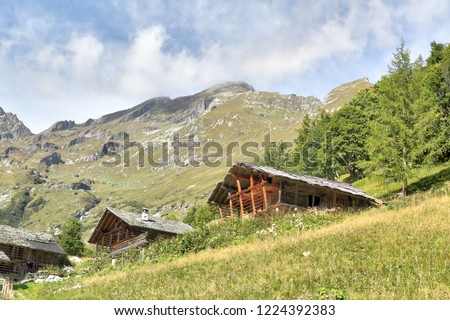 The Walser town of Weng, with wood and stone lodges, high mountains, forests and pastures, in summer, in Val d'Otro valley, Alps mountains, Italy Foto stock ©