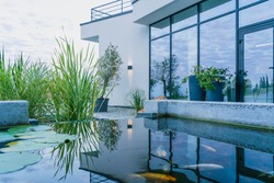 The water in the fish pond reflects the view of the glass wall of the modern home and creates a soothing mood. Out-of-town lifestyle