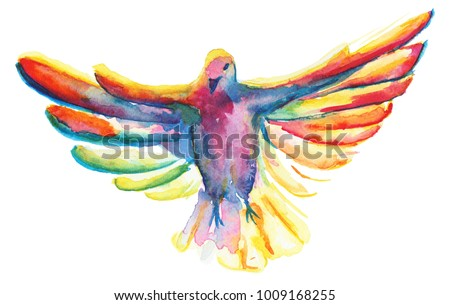 The watercolor illustration of multicolor pigeon, symbol of the Holy Spirit, isolated on white background