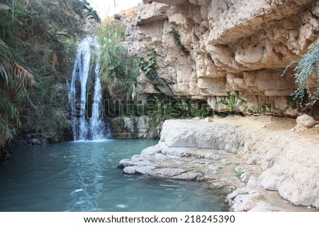 The Waterfall in national park Ein Gedi at the Dead Sea, Israel