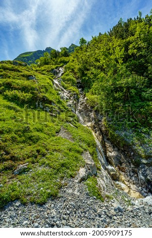 The white bubbling mountain stream plunges between flower-strewn alpine pastures over many stones down the steep slope into the valley. Flowered colored meadows in the alps of Austria, Vorarlberg Stock photo ©
