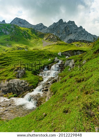 The white bubbling mountain stream plunges between flower-strewn alpine pastures over many stones down the steep slope to the lake of Brand. high mountains in background at a cloudy day in Vorarlberg Stock photo ©