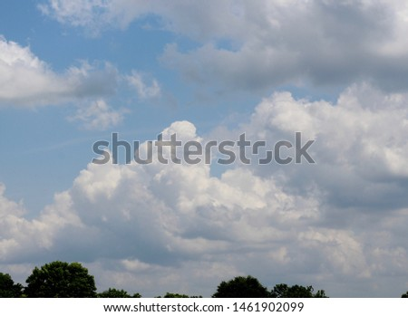 The white cloudscape in the sky over the treetops on a sunny day. #1461902099