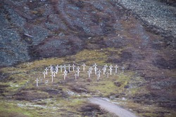 The white crosses of the historic graveyard cemetery, built in 1918 after miners died of the Spanish flu, also known as the 1918 influenza pandemic, in Longyearbyen, Spitsbergen, Svalbard, Norway.