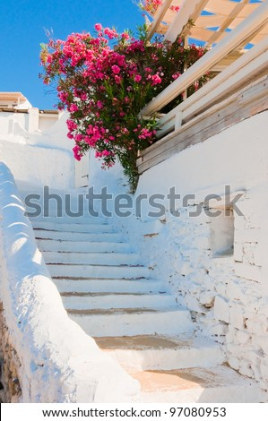 The white old staircase and flowers -  Greek islands