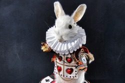 The white rabbit from Alice in wonderland taxidermy