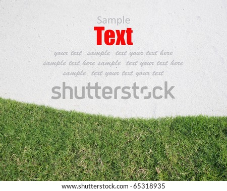The white sand and green grass background
