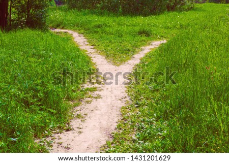 The wide path in the grass splits into two narrow paths