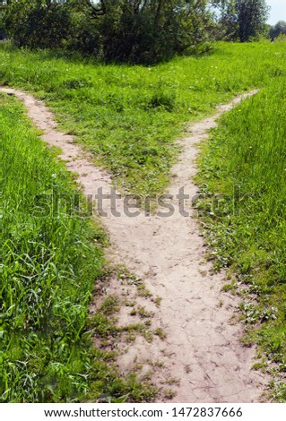The wide trodden path in the grass splits into two narrow paths