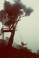 The Wildest Swing At Casa Del Arbol, Tree House
