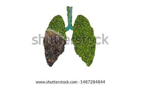 The wildfire in the amazon rainforest, the biggest lung in the world. 3d illustration