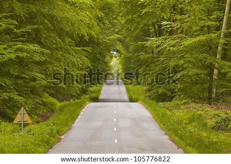 The winding road and dense woodland that leads to Lyons-la-Foret.