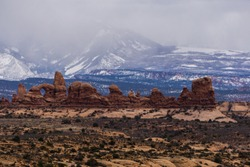 The Windows area of Arches, with the La Sal Mountains in the background.
