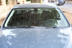 the windshield of a dirty car in stains and drops of dirt after a rain, front view of the window with wipers.