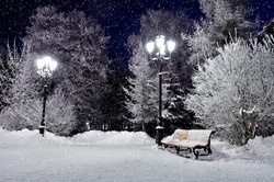 The winter evening landscape with falling snow