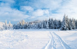 the winter road. Dramatic scene. Carpathian Ukraine Europe