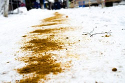 The winter sidewalk is sprinkled with sand. Ice, injury. Sand in the snow. Sand in the macro on the snow. Safety